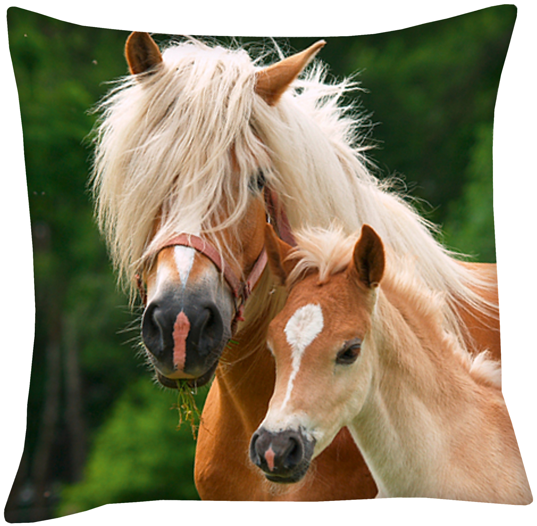 pferde foto kissen stute und fohlen 40x40cm. Black Bedroom Furniture Sets. Home Design Ideas